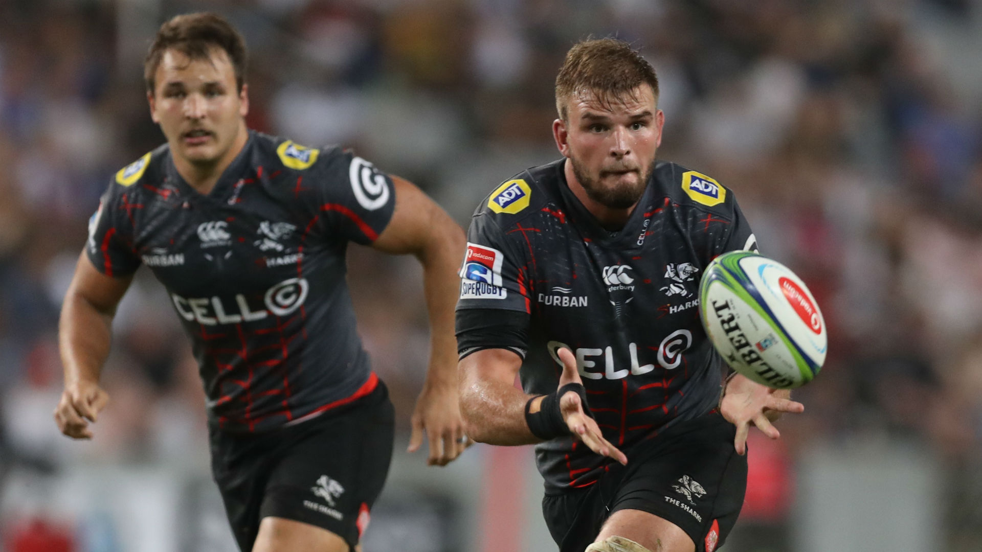 Sharks Claim Currie Cup Final Revenge Over Western Province Rugby