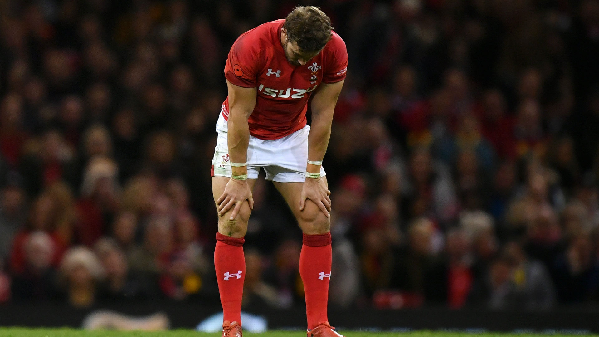 Halfpenny, Davies and Williams set to miss France clash
