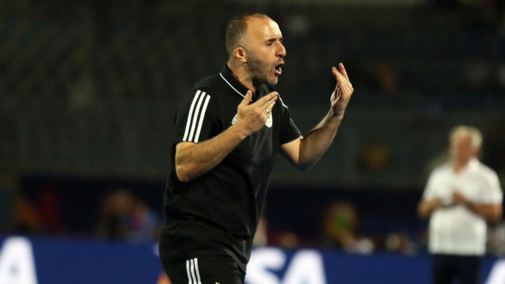 Algeria v Nigeria: 'History' within touching distance for Belmadi