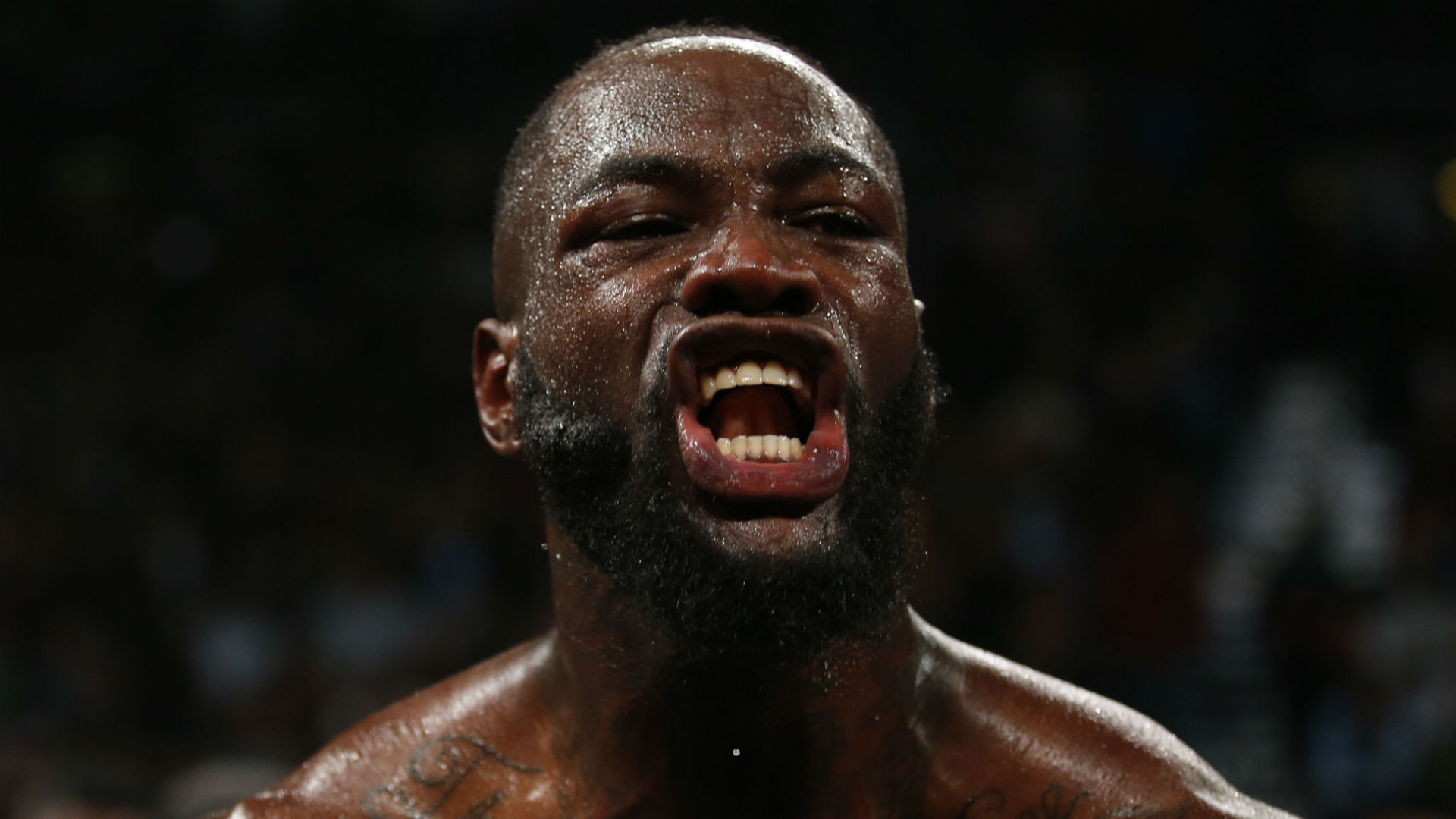 Wilder-Fury rematch details to be finalised 'in the next couple of weeks'