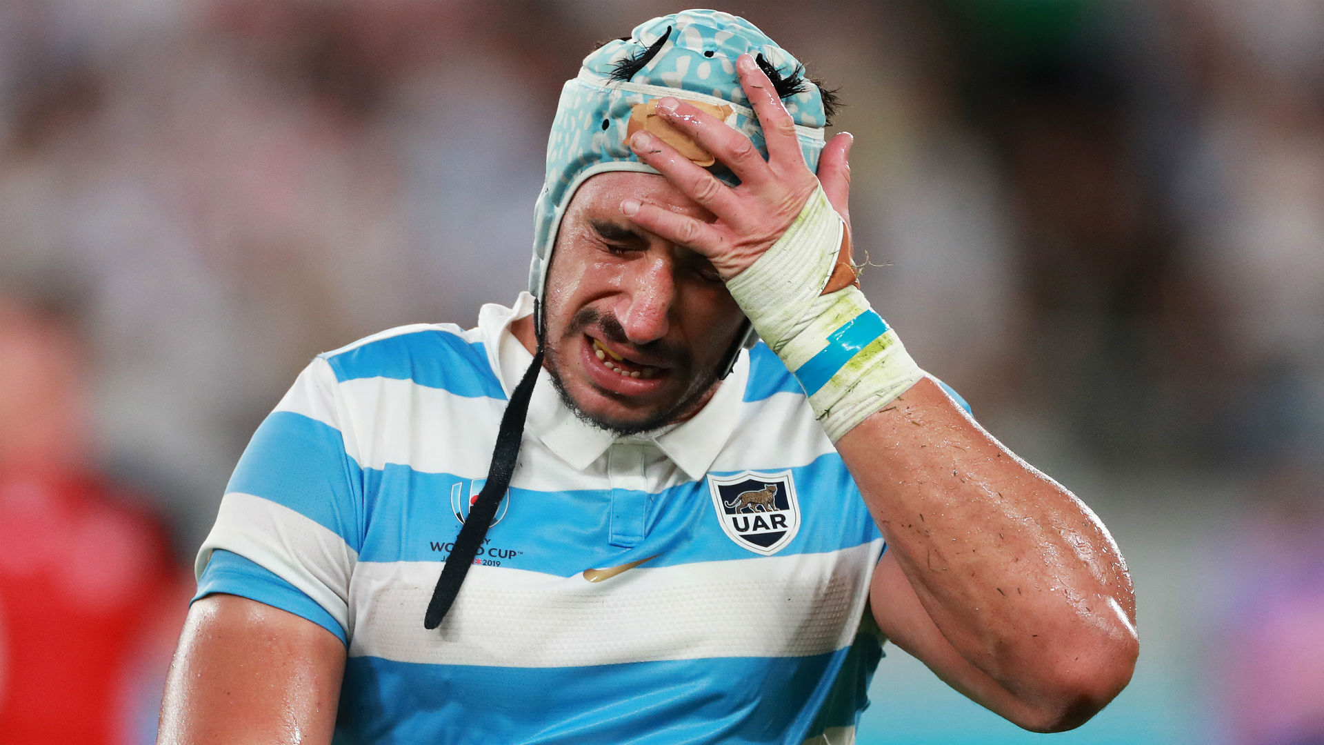 Rugby World Cup 2019: England 39-10 Argentina