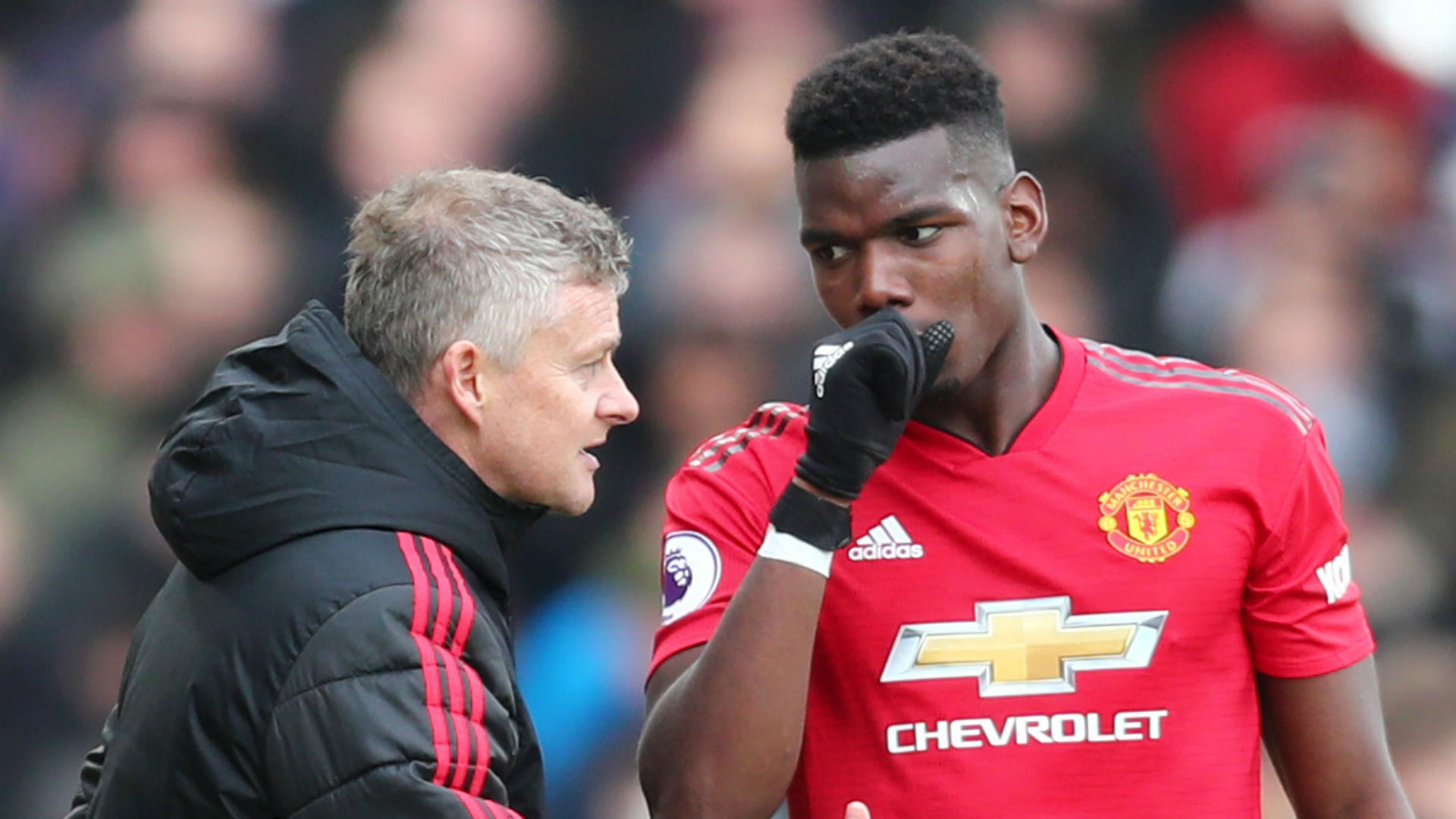 RVP tells Pogba and Solskjaer to clarify Man Utd plans with joint interview