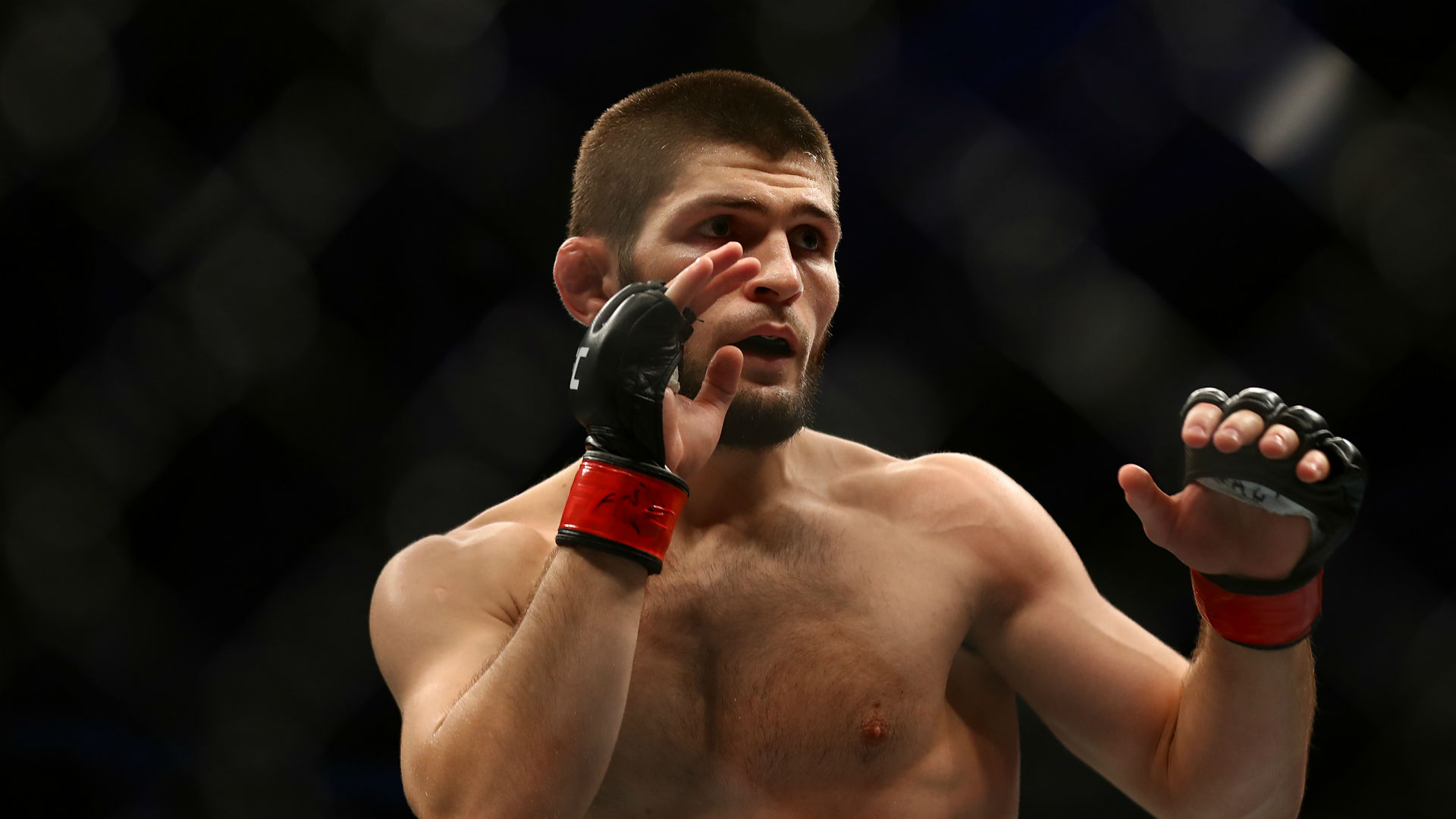 Coronavirus: UFC assures Khabib v Ferguson 'will still happen'